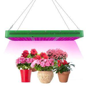 led croissance et floraison achat vente pas cher. Black Bedroom Furniture Sets. Home Design Ideas