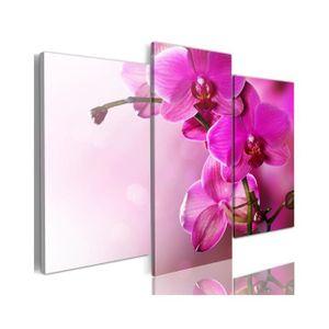 TABLEAU - TOILE Tableau Orchidée De Couleur Rose Foncé - Dimension