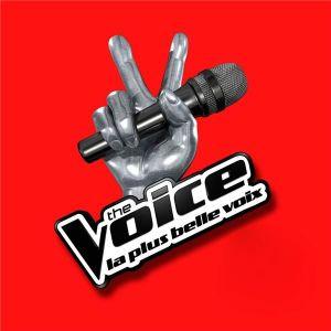 CD COMPILATION THE VOICE - La Plus Belle Voix Coffret
