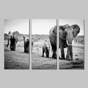 tableau toile toile peinture sans cadrepas tir pas encadr - Cadre Elephant