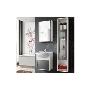 COLONNE - ARMOIRE SDB Meuble salle de bain DOMINO - Meubles salle de bai