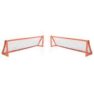 BUT SPORT DE GLACE But de Hockey Training Phoenix (2.44m x 0.6m) - or