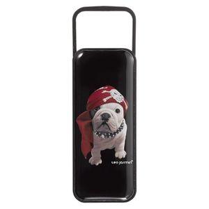 KEYOUEST Clé USB Téo Jasmin - Teo Pirate - 16 Go