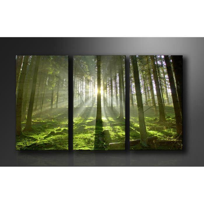 tableau triptyque imprim 160x90 cm foret achat. Black Bedroom Furniture Sets. Home Design Ideas