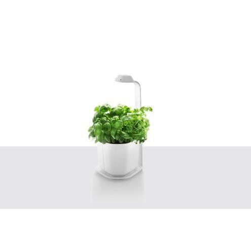Tregren Genie 3 Plantes Jardiniere D Interieur Autonome Pour Herbes