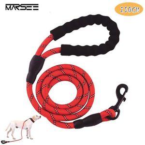 LAISSE - ACCOUPLE Laisse pour chien, 1,5 m Corde Twist Laisse en For