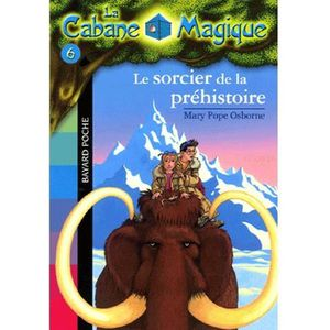 Livre 6-9 ANS La Cabane Magique Tome 6