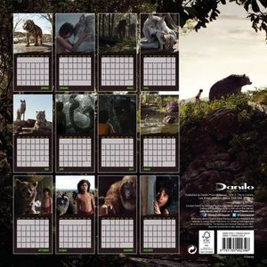 Calendrier 2017 mural achat vente calendrier 2017 for Calendrier mural pas cher