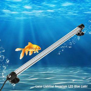 DÉCO ARTIFICIELLE Lampe Aquarium LED, Rampe LED Lumiere Aquarium Pla