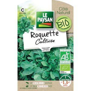GRAINE - SEMENCE LE PAYSAN Roquette cultivée bio