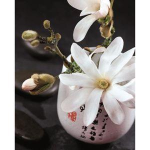 Affiche papier - Composition Zen : Magnolia Stella. - Beyler - 24x30 cm
