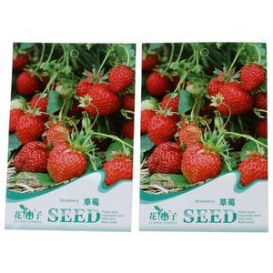 graine de fraise achat vente graine de fraise pas cher cdiscount. Black Bedroom Furniture Sets. Home Design Ideas