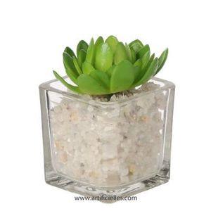 plante grasse artificielle achat vente plante grasse artificielle pas cher cdiscount. Black Bedroom Furniture Sets. Home Design Ideas