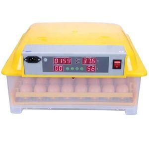 COUVEUSE - INCUBATEUR POILS & PLUMES Kit couveuse automatique 48 œufs -