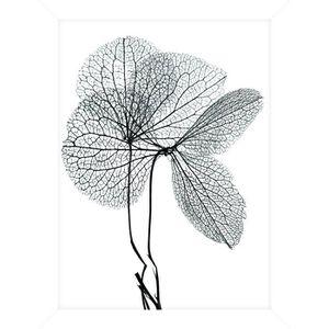 CADRE PHOTO Cadre pour coffre ou étagère Fleur Gris - 18 x 24