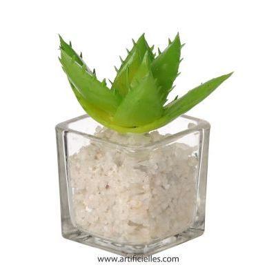 plante grasse artificielle succulente cactee en achat vente fleur artificielle verre. Black Bedroom Furniture Sets. Home Design Ideas