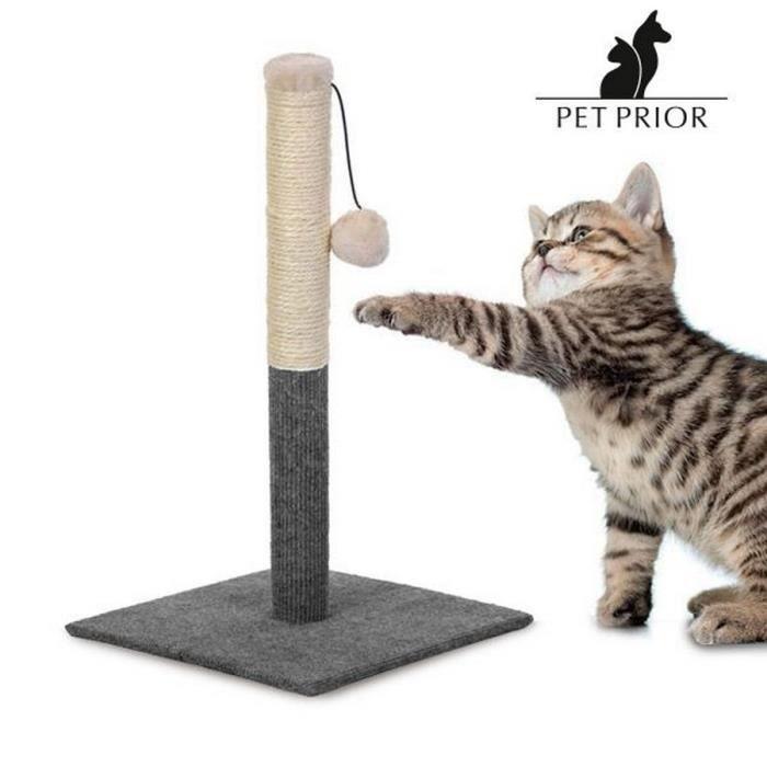 griffoir poteau jouet pour chat en bois tour tronc grattoir myanimal achat vente griffoir. Black Bedroom Furniture Sets. Home Design Ideas
