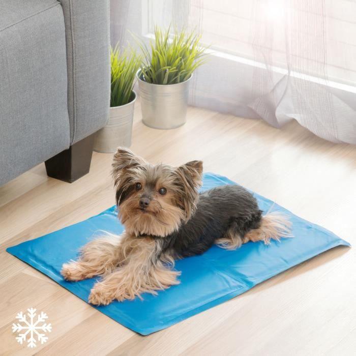 INNOVAGOODS Tapis de refroidissement - 40 x 50 cm - Pour chien