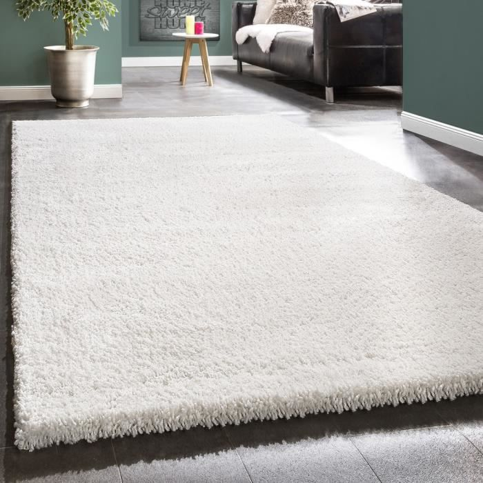Tapis shaggy blanc 120x170 achat vente tapis shaggy blanc 120x170 pas che - Tapis shaggy 120x170 ...
