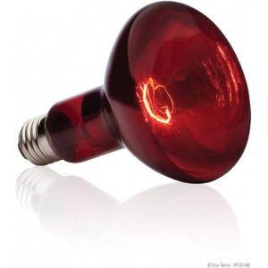 BASKING SPOT lampe infrarouge 75 W