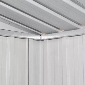 ABRI JARDIN - CHALET Abri de jardin Métal Gris Abris, garages et abris