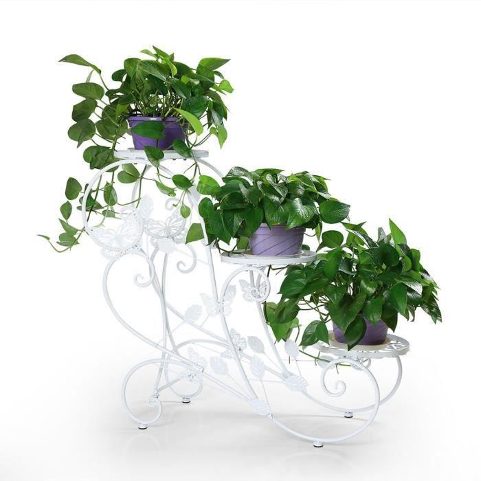 Plante et fleurs de jardin achat vente plante et for Achat plante jardin