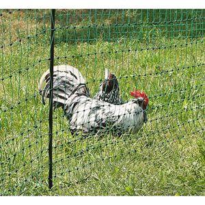 FILET DE PROTECTION Filet poules 25m double pointe PoultryNet
