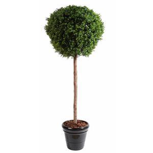 Arbuste sur tige achat vente pas cher for Arbuste buis artificiel