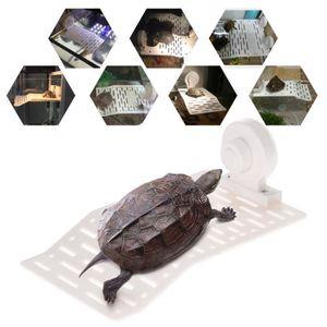 Deco aquarium tortue achat vente pas cher for Achat deco aquarium