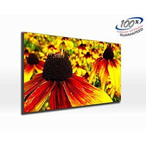 TABLEAU - TOILE Fleur couleur Burst toile impression photo panoram