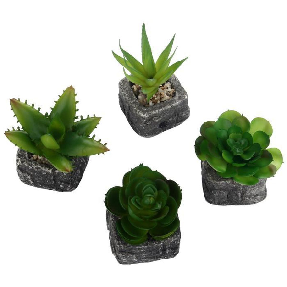 Mini plantes artificielles succulentes avec pot pour la for Plante artificielle prix