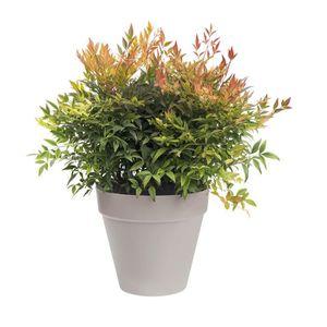 roulette pour pot de fleur achat vente pas cher. Black Bedroom Furniture Sets. Home Design Ideas