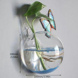 VASE - SOLIFLORE Vase Rond à suspendre en verre pour pour hydroponi