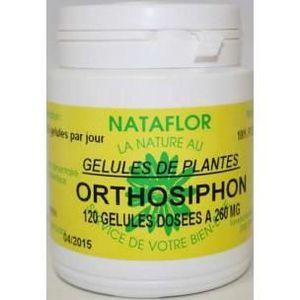 COMPLÉMENT MINCEUR GELULES ORTHOSIPHON  feuille 240 gélules dosées...