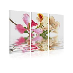 TABLEAU - TOILE Tableau Orchid With Colorful Spots - Dimension - 6
