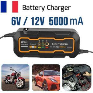 CHARGEUR DE BATTERIE 5000mA Chargeur de batterie voiture Intelligent Ra