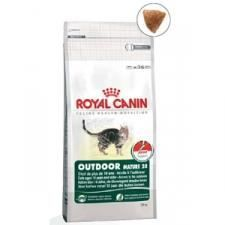 royal canin chat 2 kg - achat / vente royal canin chat 2 kg pas