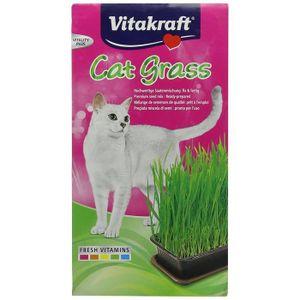 HERBE À CHAT Vitakraft - 24031 - Herbe à Chat - Cat-Gras:  Anim