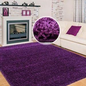 Tapis violet 200 290 - Achat / Vente pas cher