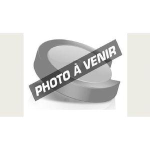 CARTE GRAPHIQUE INTERNE Lenovo NVIDIA Quadro P600 - 2 Go Quad Mini Display