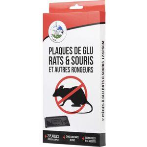 PIÈGE NUISIBLE JARDIN Plaques glu x2 - 12x25 cm - Rats & souris