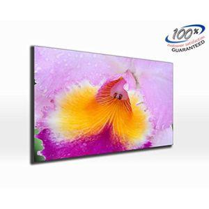 TABLEAU - TOILE Couleur Burst fleur toile impression photo panoram