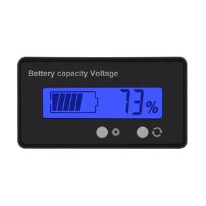 DÉTECTEUR D'INONDATION LCD Batterie Capacité Moniteur Jauge Mètre Plomb A