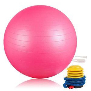 BALLON SUISSE-GYM BALL DAMIGRAM Ballon de Gymnastique 65cm, Ballon Suisse