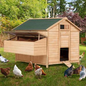 POULAILLER Poulailler chalet en bois 15 à 18 poules avec pond