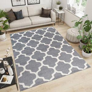 TAPIS TAPISO Maroko Tapis de Salon Design Moderne Gris C