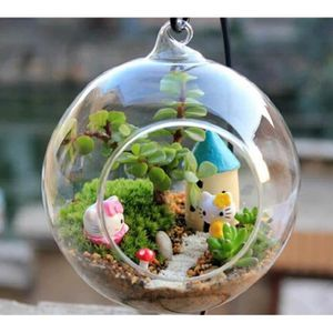 VASE - SOLIFLORE Vase en verre rond Bouteille suspendue Plante à co