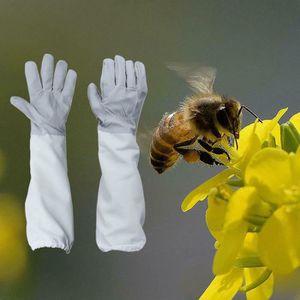 PACK DE DÉMARRAGE Gants apicole en abeille en peau de chèvre avec un