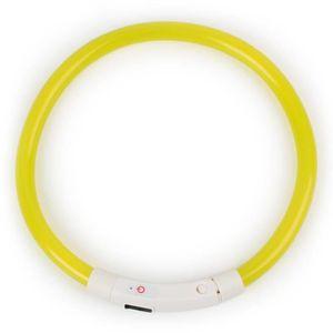 COLLIER Rechargeable LED Nuit Clignotant Lumineux USB De C