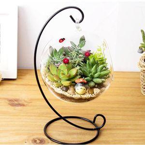 VASE - SOLIFLORE Vase en verre suspendu grand terrarium cadre plant